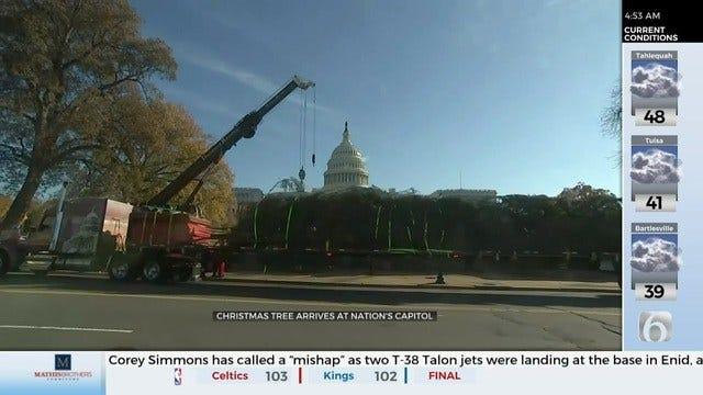WATCH: U.S. Capitol Christmas Tree Arrives