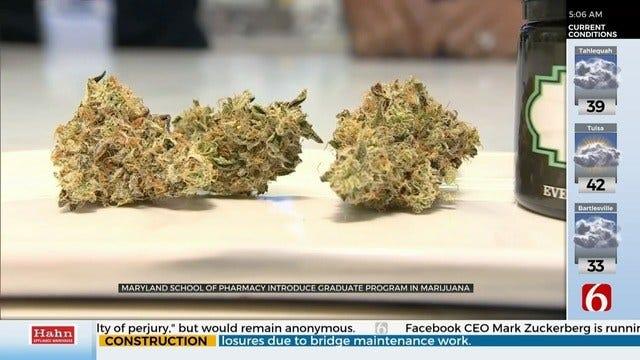 WATCH: Some Universities Offering Medical Marijuana Courses