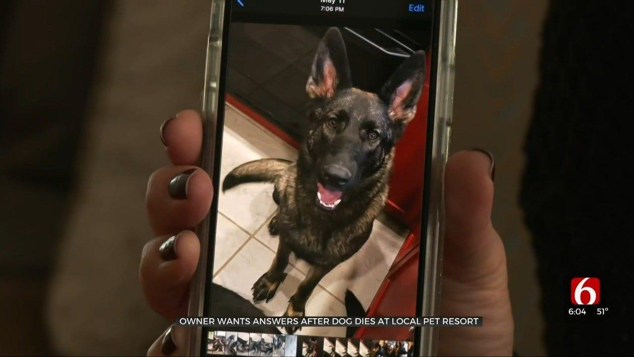 Tulsa Woman's Dog Dies In The Hands Of Pet Resort