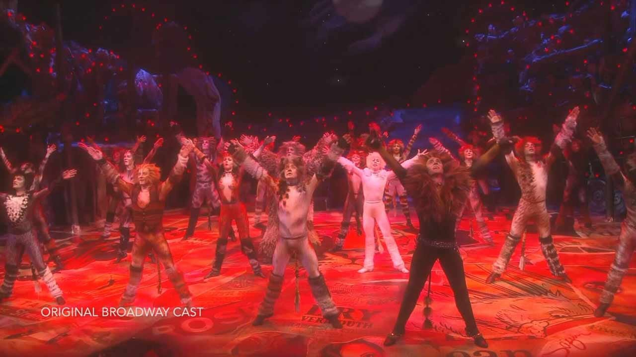"""The Musical """"Cats"""" Returns To Tulsa"""
