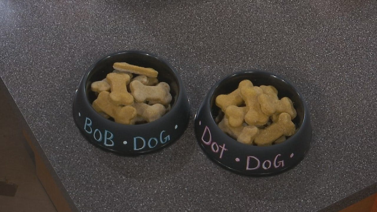 How To Make Simple Delicious Dog Treats At Home