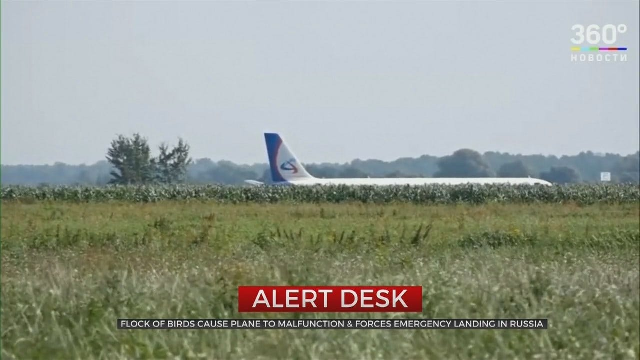 Passengers Injured In Emergency Landing After Russian Jet Hits Birds