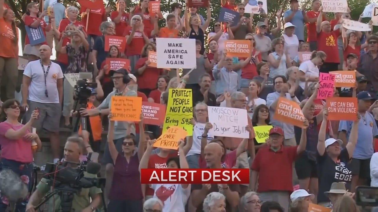 Lawmakers Debate Gun Control Legislation
