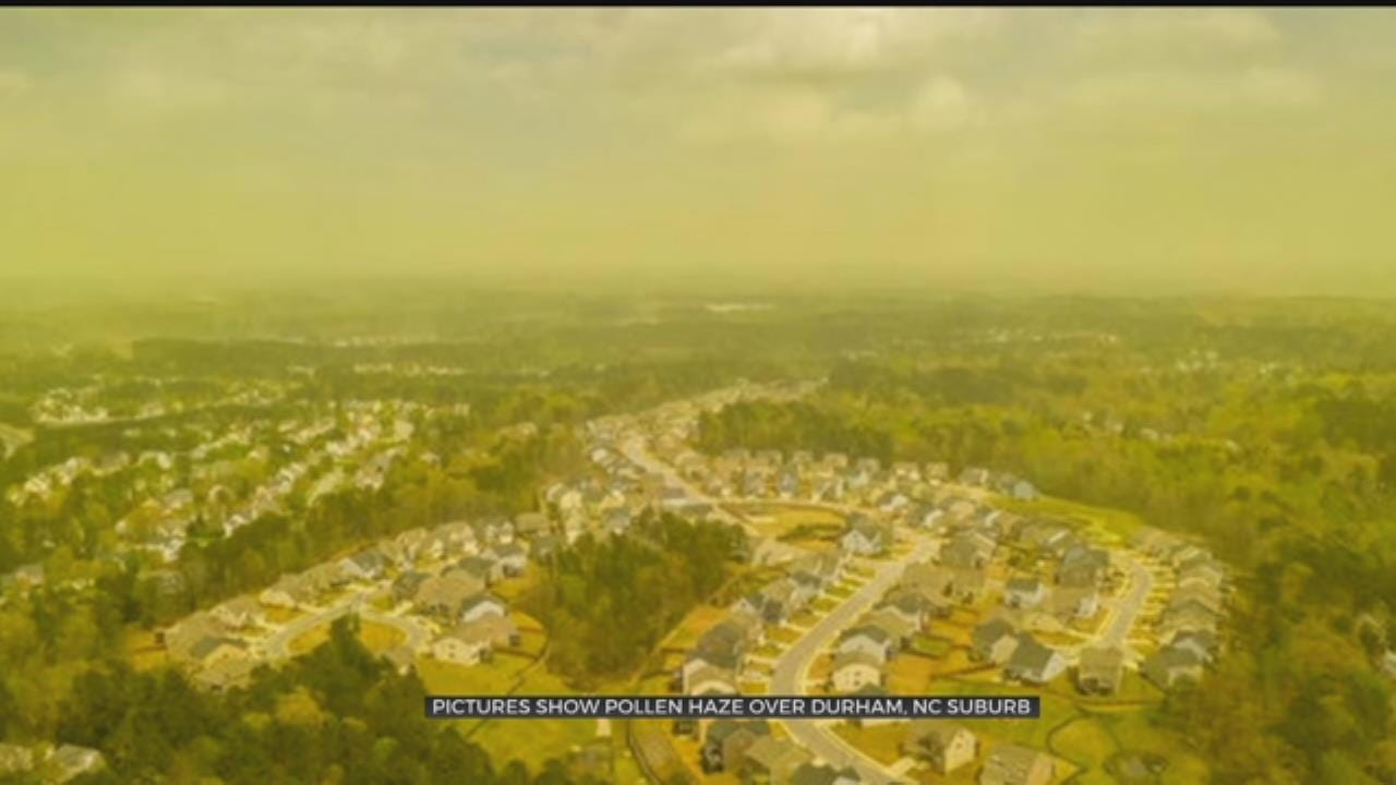 LOOK: Pictures Show Pollen Haze Over Durham, NC Suburb