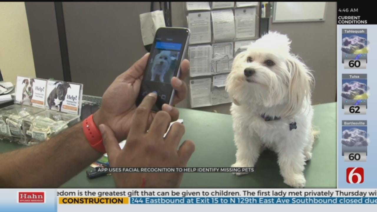 New App Helps Reunite Lost Pets With Owners