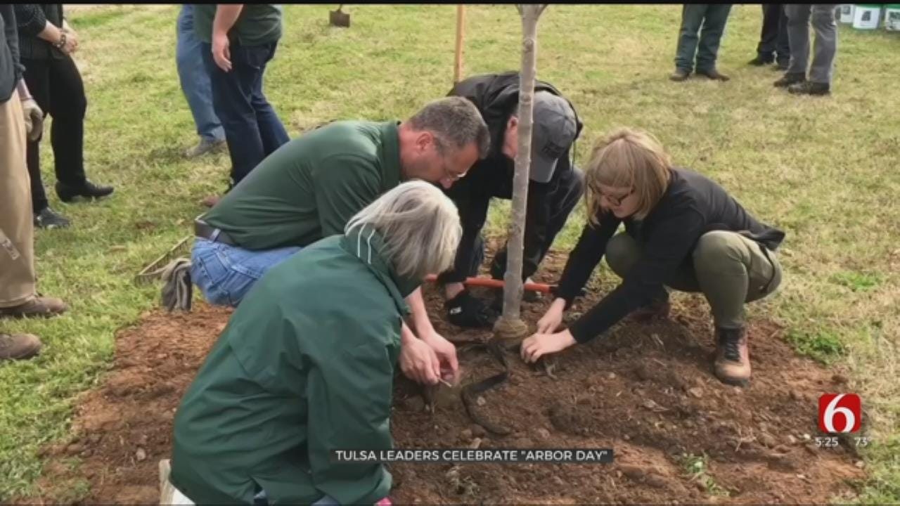Tulsa Celebrates Arbor Day By Planting Trees