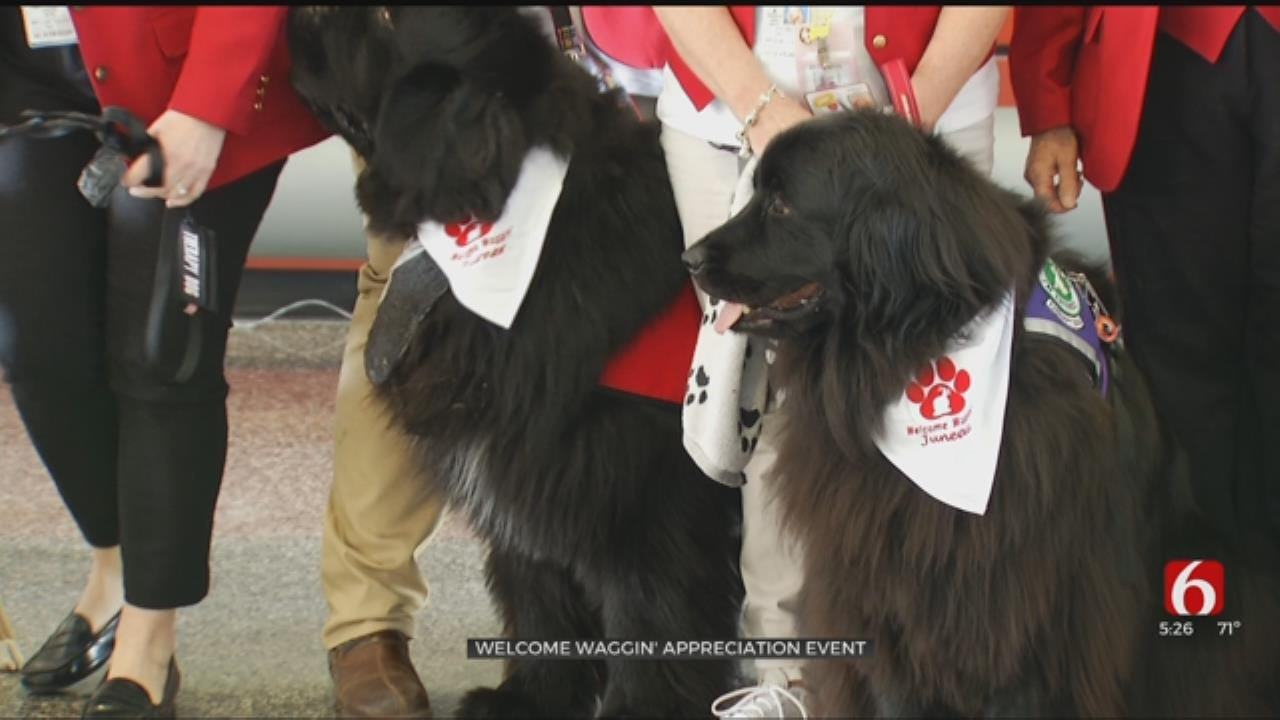 Tulsa International Airport Celebrates 'Welcome Waggin' Program