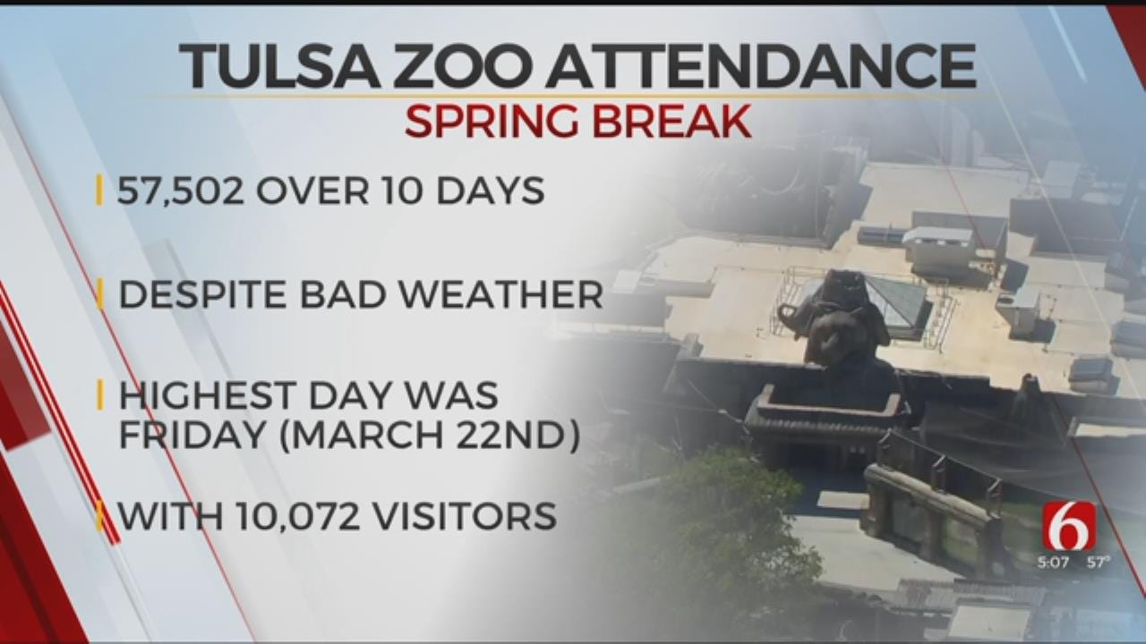 Spring Break Brings Over 50,000 Visitors, Tulsa Zoo Says