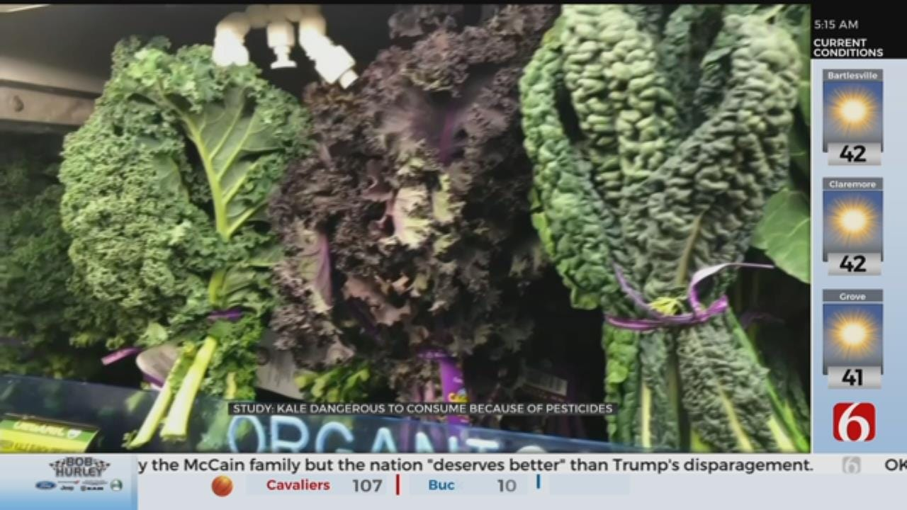 Kale Added To Annual List Of Fruits And Veggies With Most Pesticides