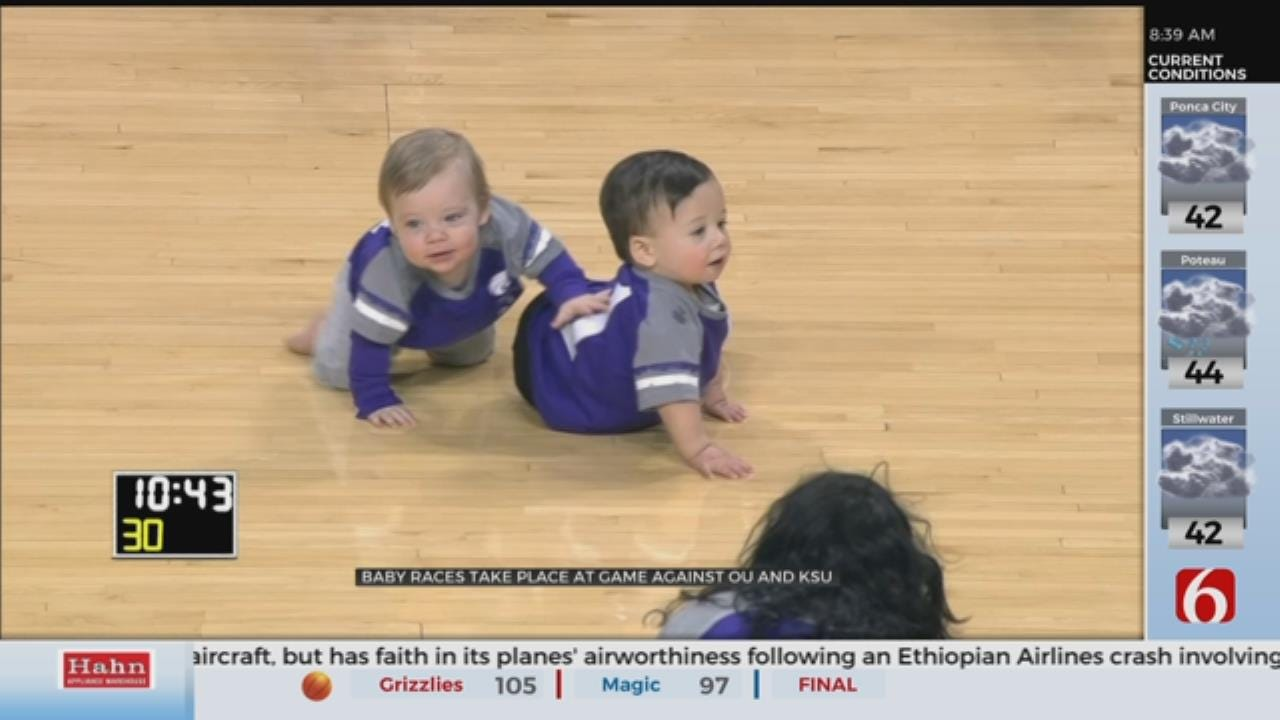 Tiny Basketball Fans Have Competition Of Their Own