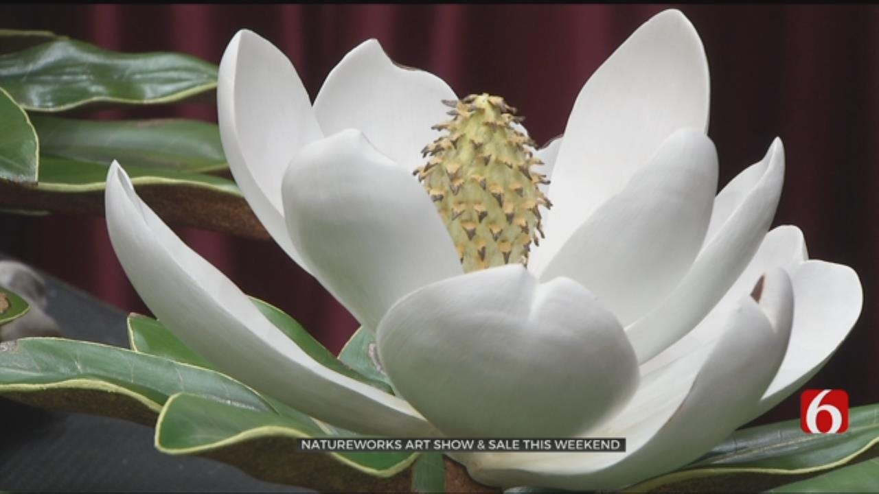 Tulsa Natureworks Art Show Helps Wildlife Conservation