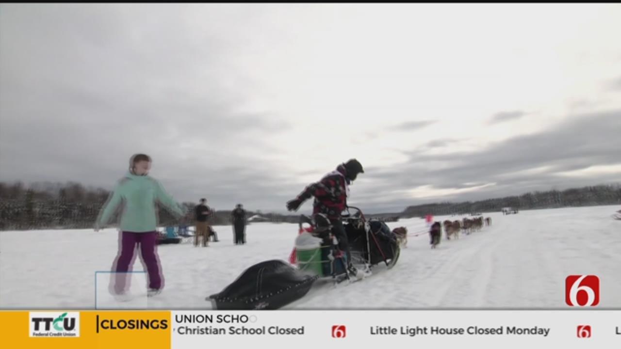 Sled Dog Race Underway