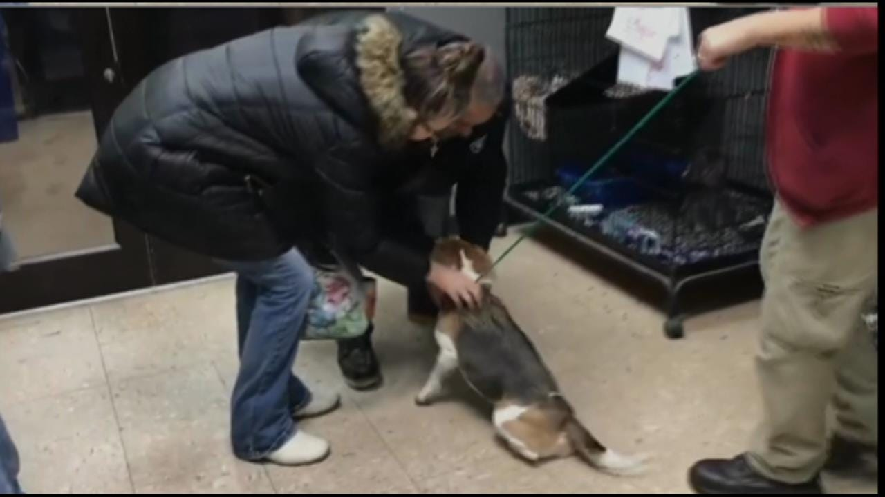 WATCH: Missing 3-Legged Support Dog Reunited With Jenks Family