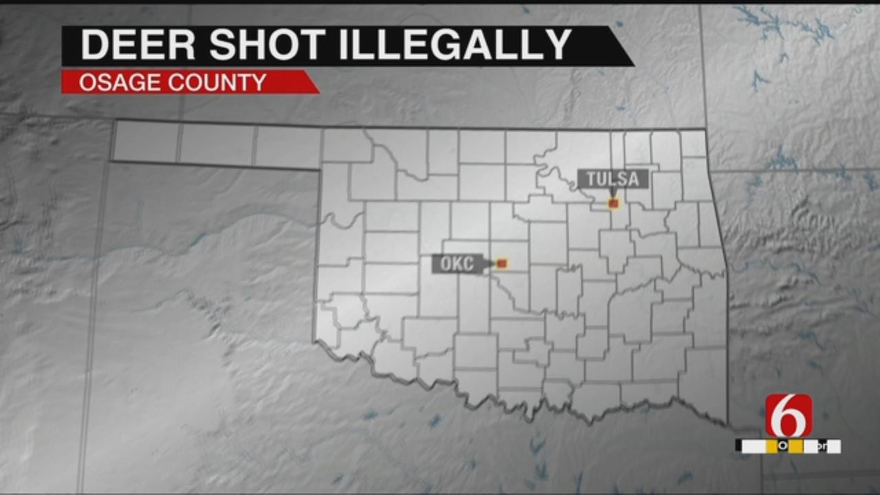 Osage County Deer Poacher Sought