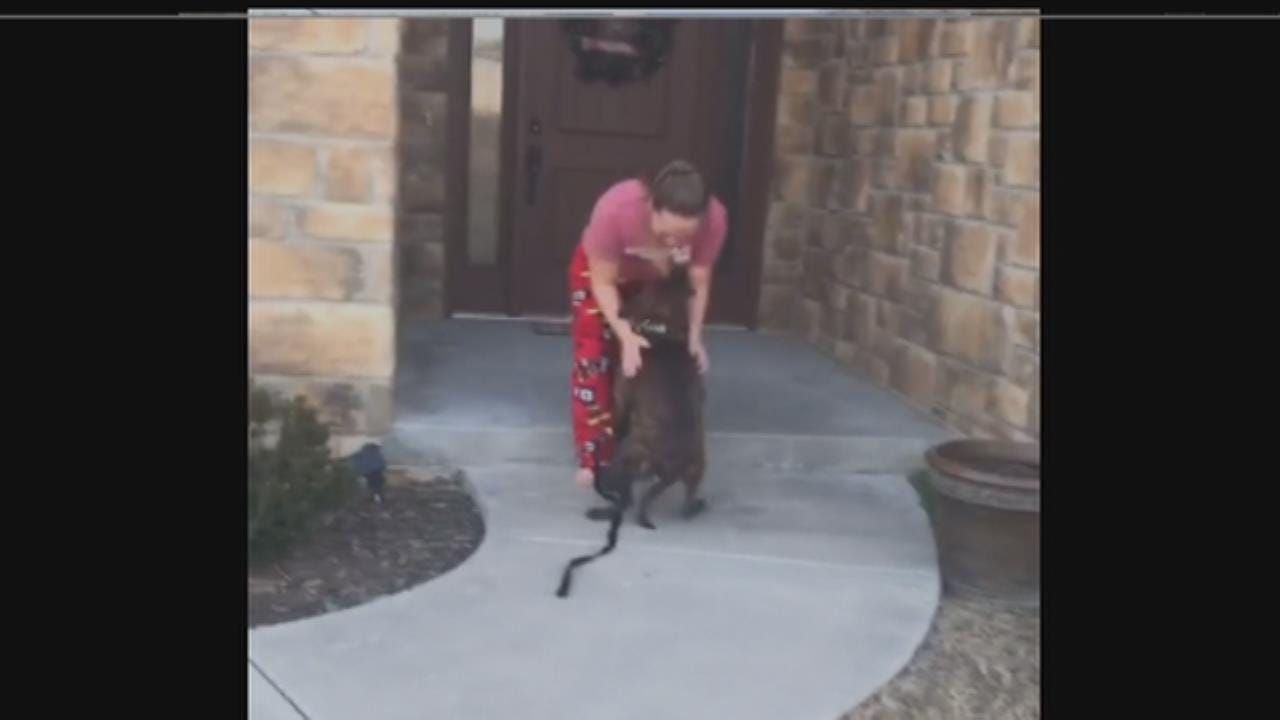 Oklahoma Parents Surprise Daughter With Shelter Dog She Cared For