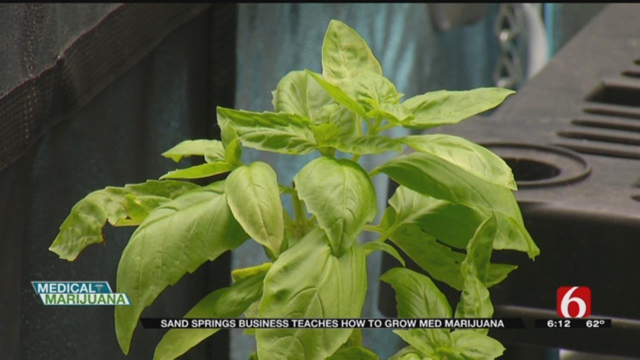 Sand Springs Business Teaches How To Grow Marijuana