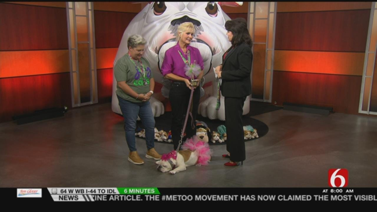 Mavis Pearl, Joy In The Cause Discuss Upcoming Run On 6 In The Morning