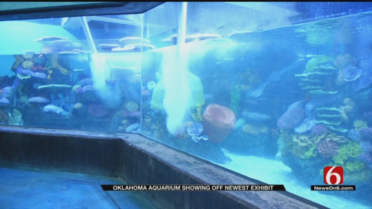 Oklahoma Aquarium Putting Final Touches On Newest Exhibit