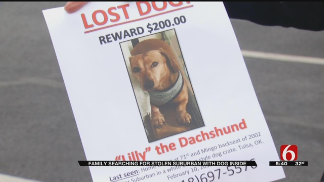 Dog Missing Along With Stolen Car, Coweta Couple Says