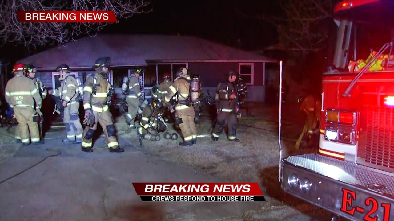 Two Dogs Die In House Fire, TFD Says