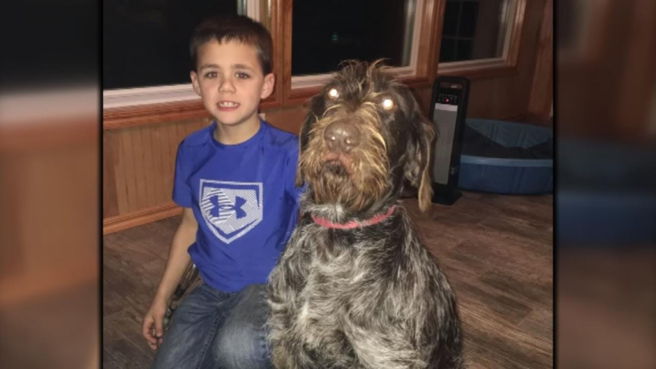 Eufaula 1st Grader Helps Save Pregnant Dog That Fell Through Ice