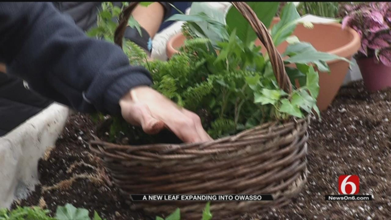 'A New Leaf' To Expand To Owasso