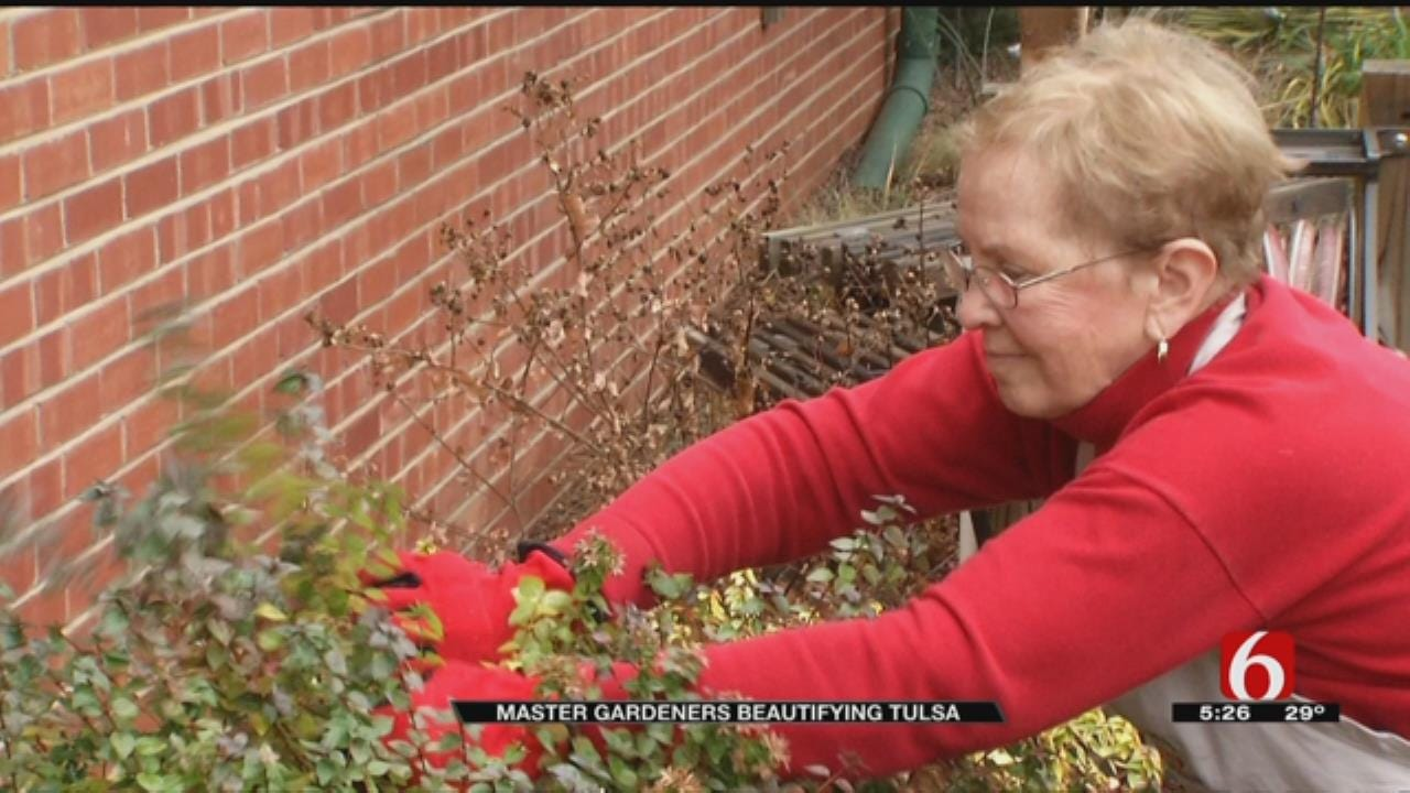 Tulsa's Master Gardeners Volunteer For Love Of Gardening