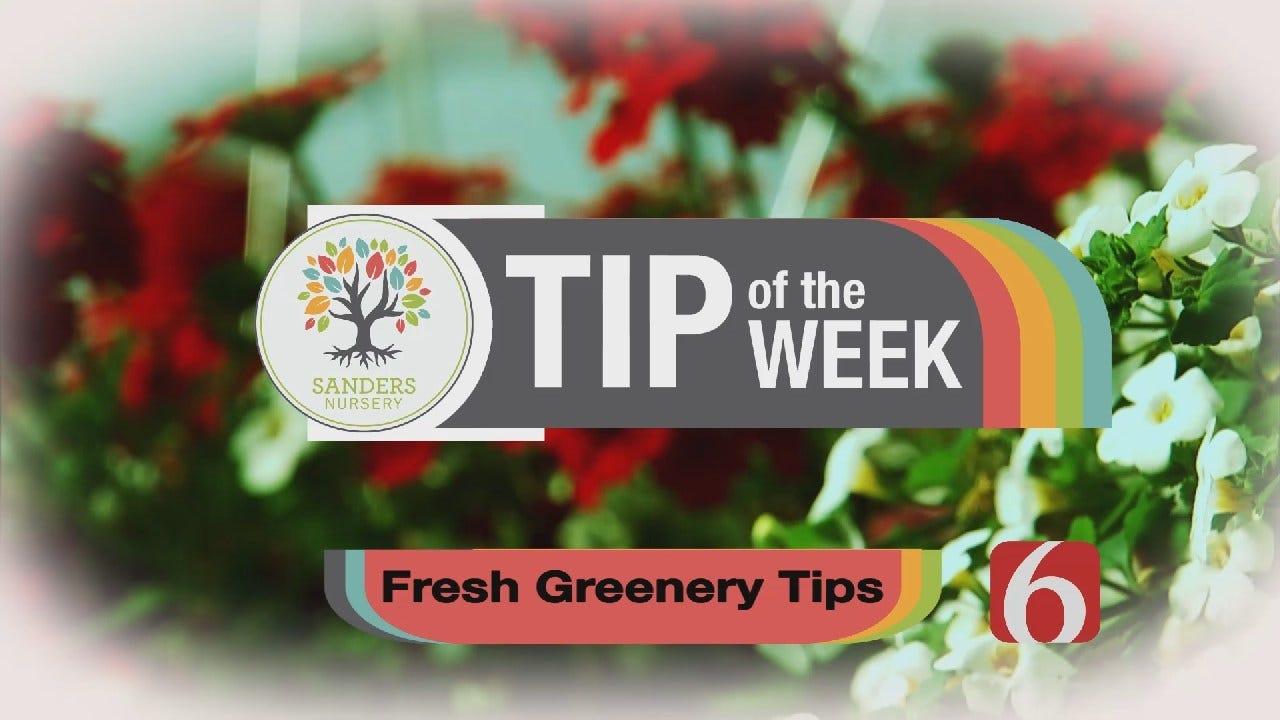 Tip of the Week 35