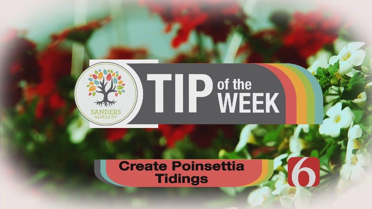 Tip of the Week 34