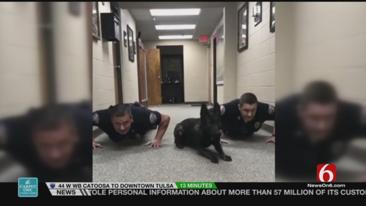 WATCH: Alabama K9 Officer Does Push Ups