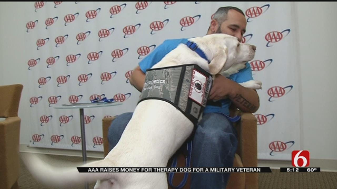 AAA Donating Money To Train Therapy Dogs For OK Veteran
