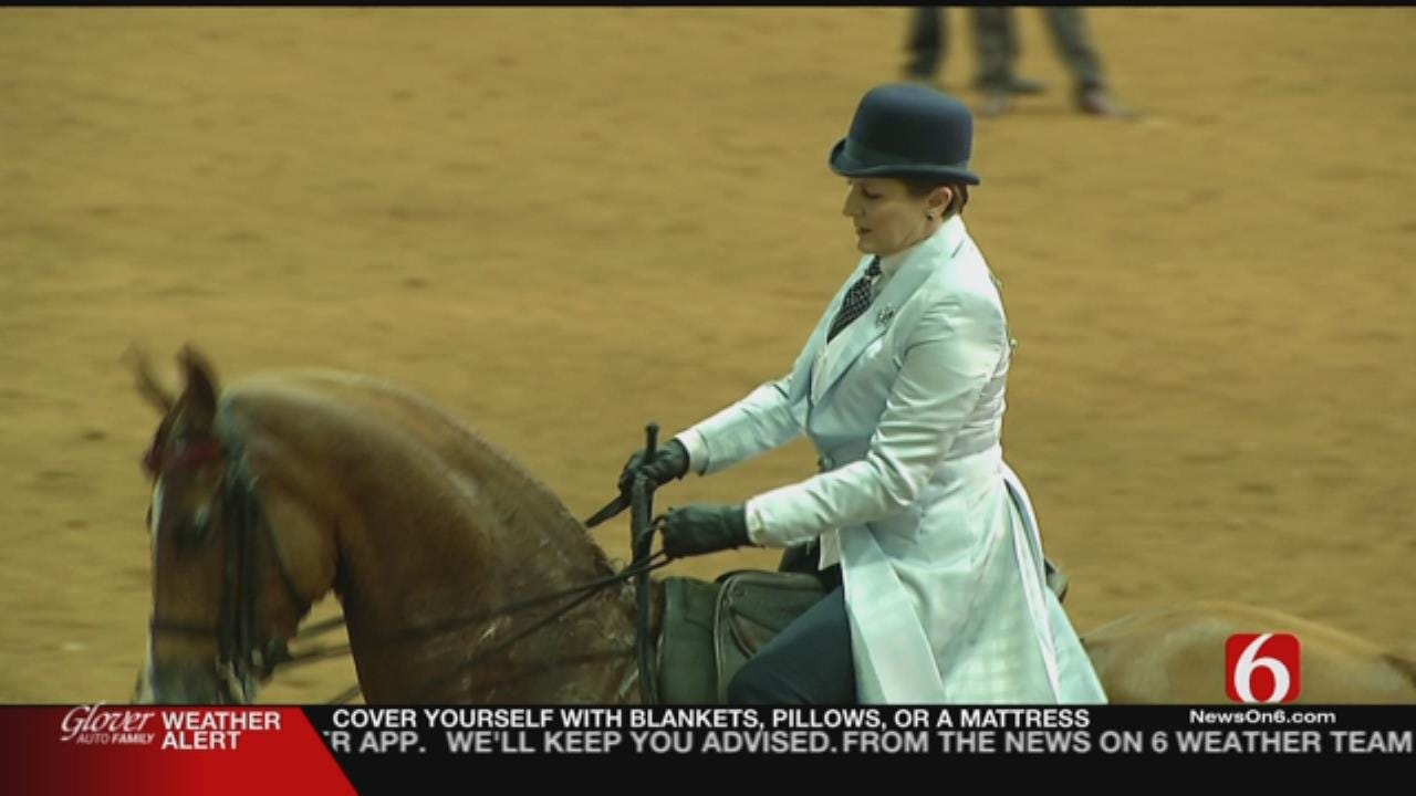 Arabian Horse Show Kicks Off In Tulsa