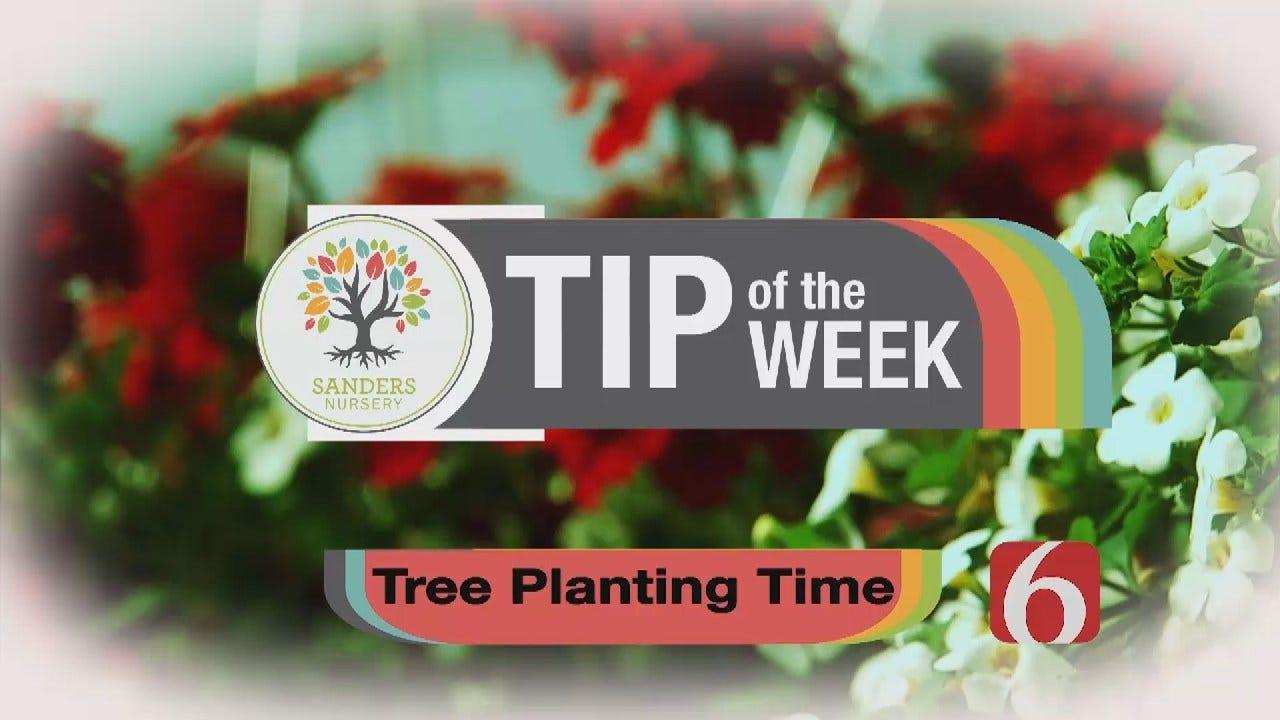 Tip of the Week 25