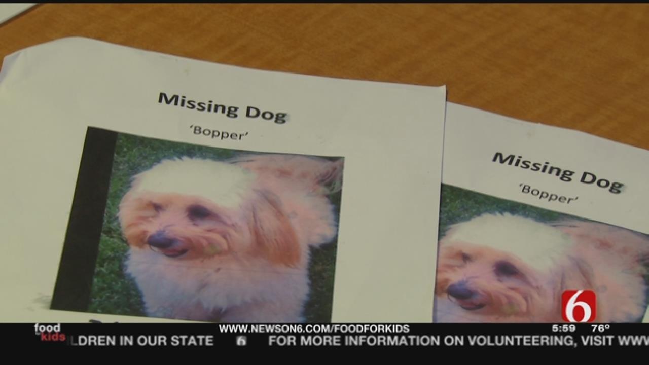 Dog Stolen In Front Of Tulsa Owner
