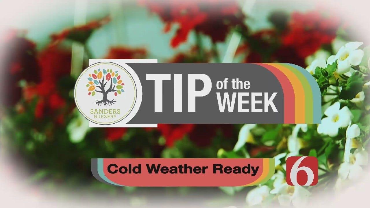 Tip of the Week 22