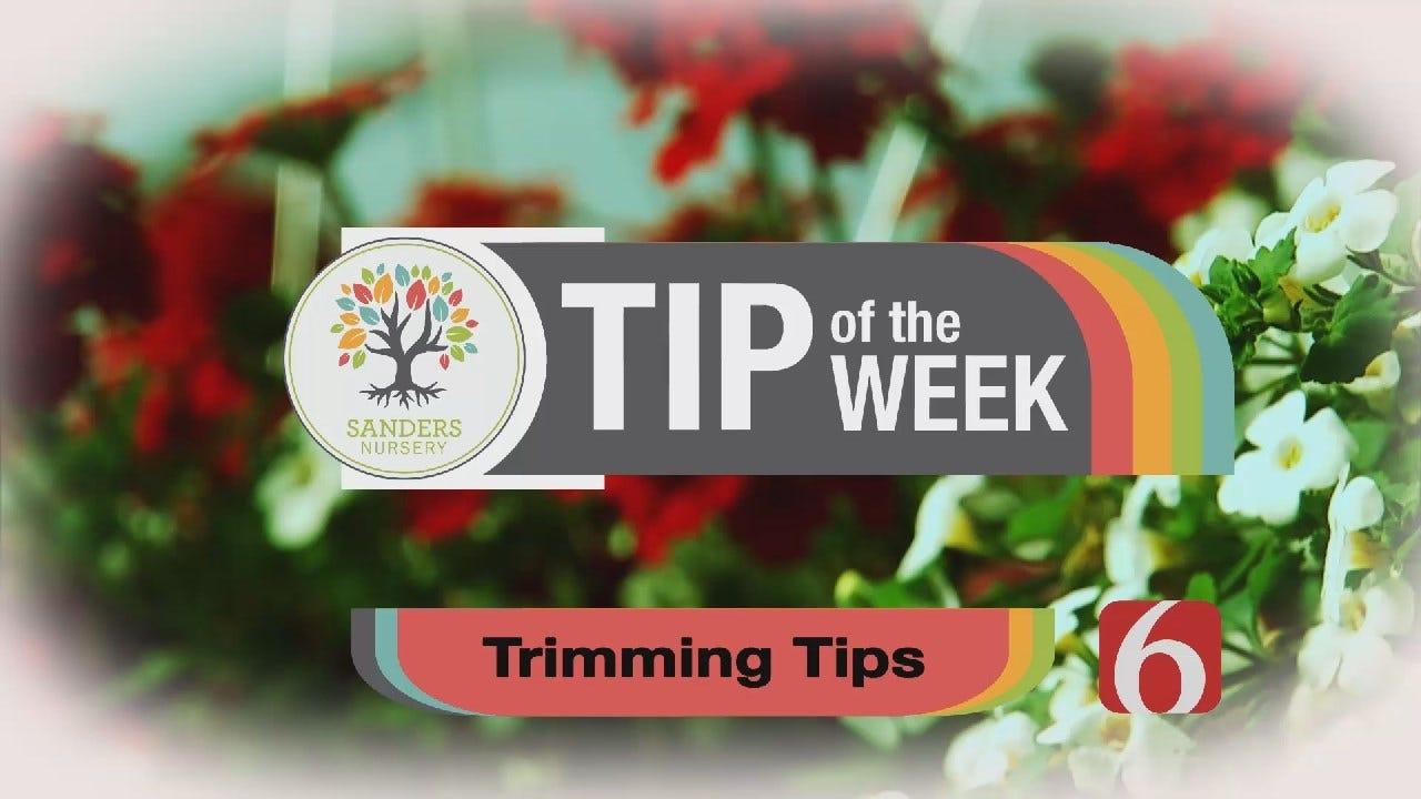 Tip of the Week 16