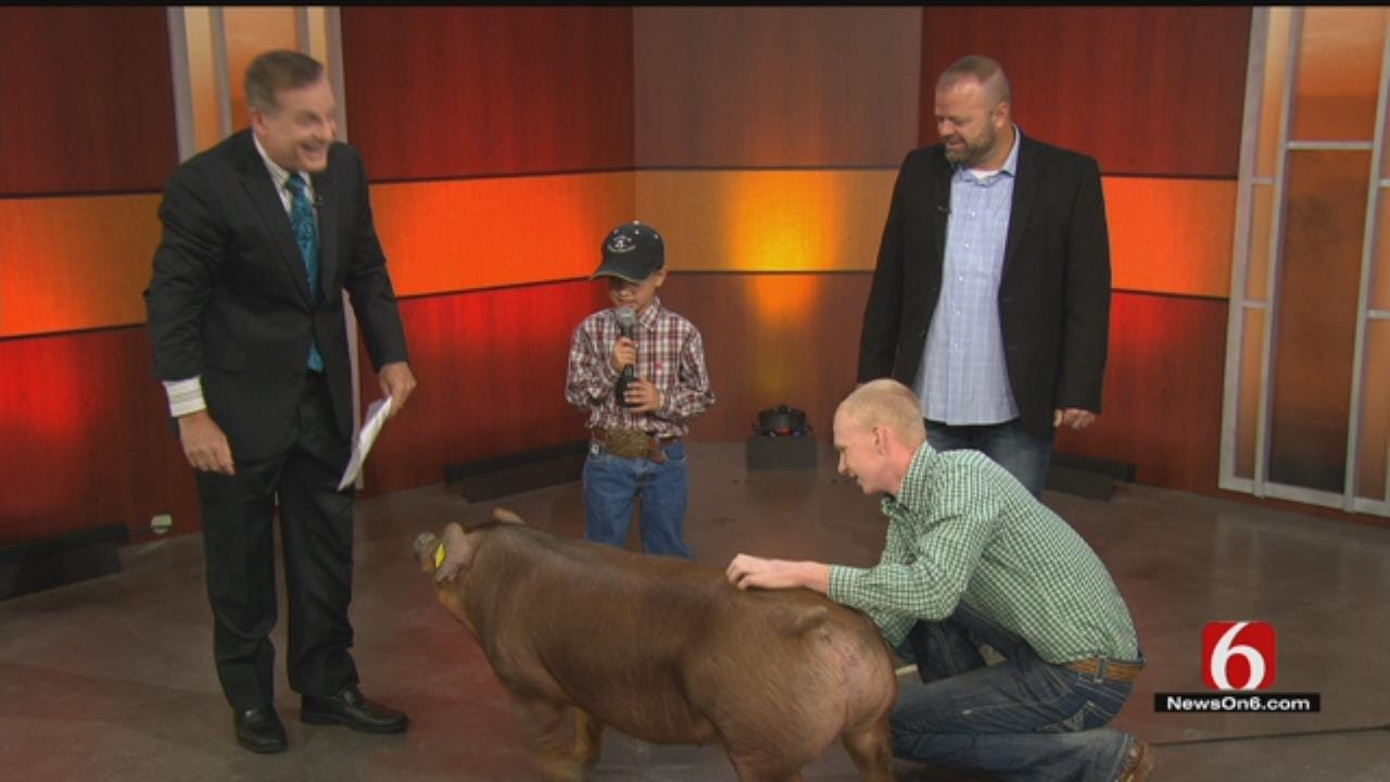 Rogers County Feeding Extravaganza Featured On 6 In The Morning