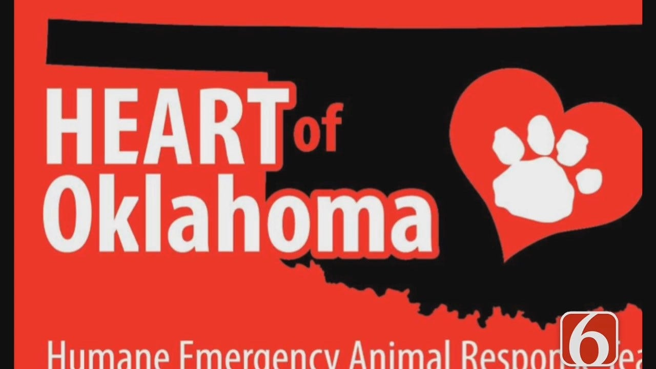 Tess Maune Says Tulsa Residents In Texas Helping At Animal Shelters