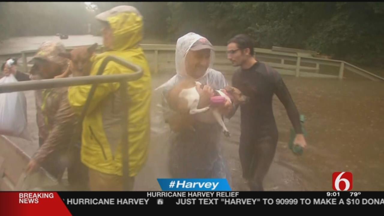 Harvey Relief Efforts Continue In Texas