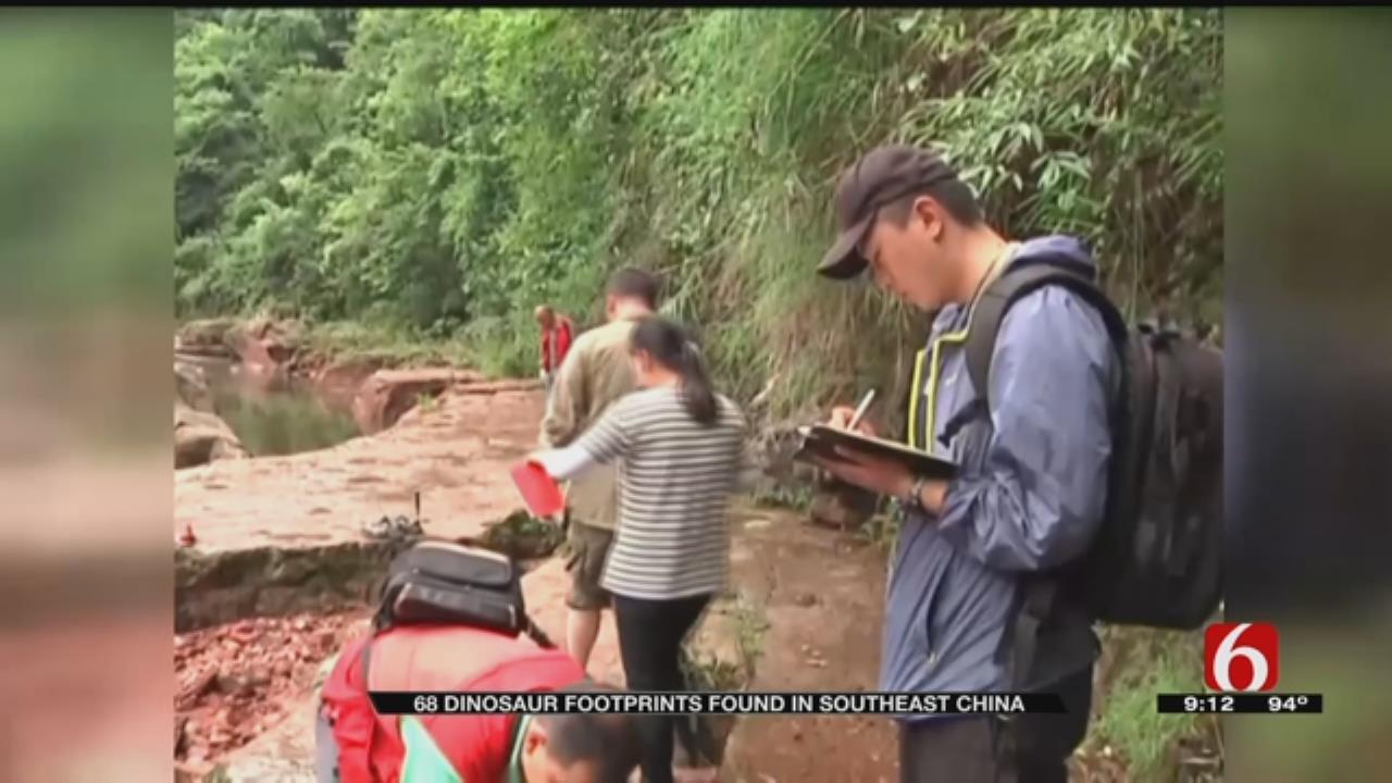 Dinosaur Footprints Found In Asia