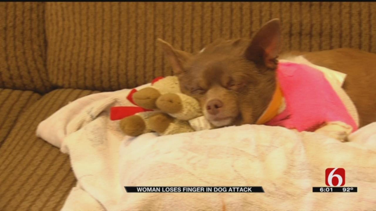 Broken Arrow Woman And Dog Recover From Weekend Attack