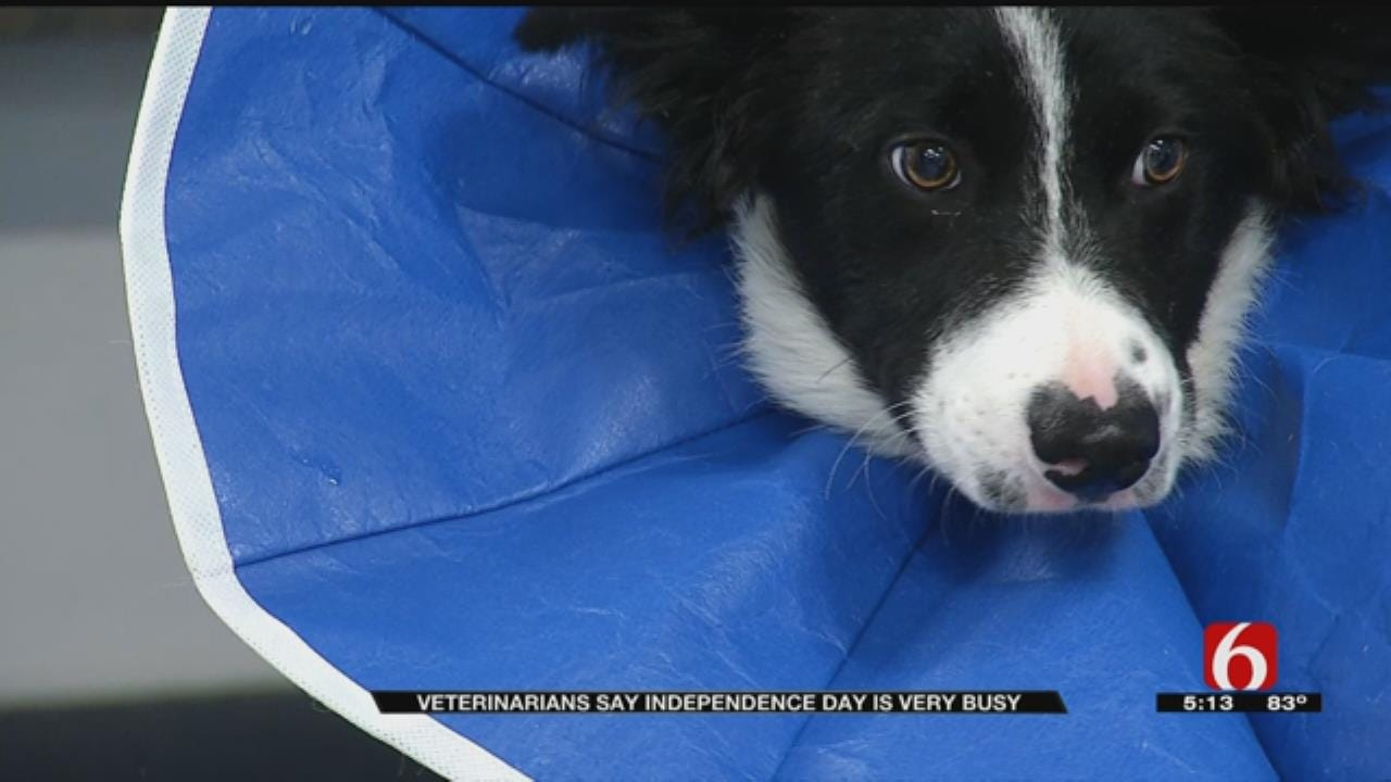 Independence Day Busy Time For Tulsa Animal Hospitals