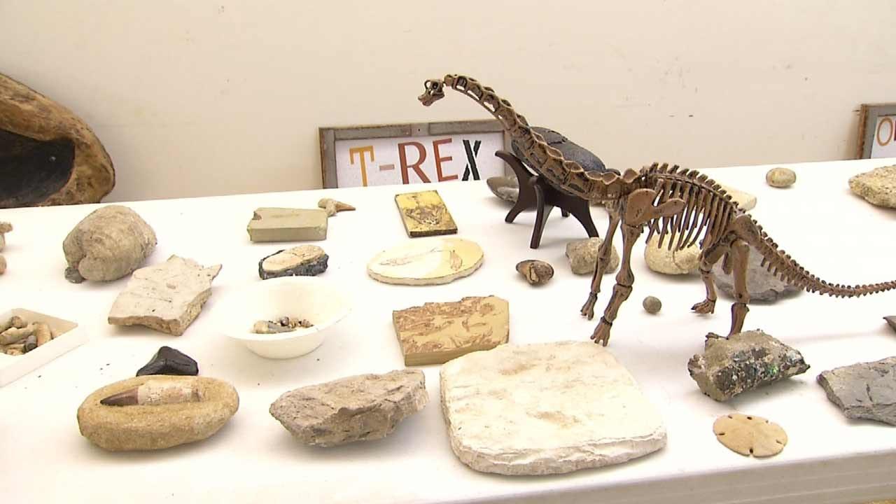 Tulsa's Geoscience Center A Fun, Educational Summer Field Trip