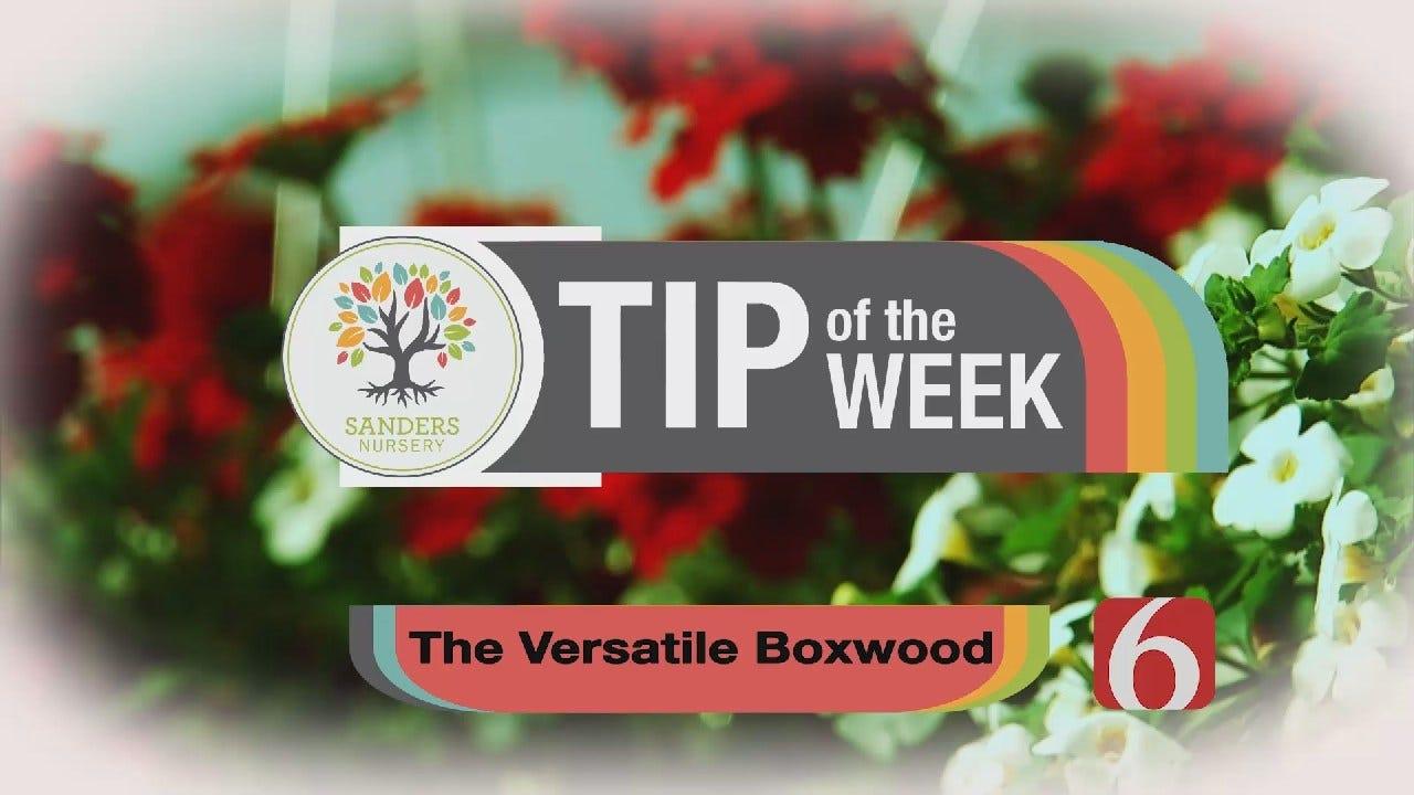 Tip of the Week 12