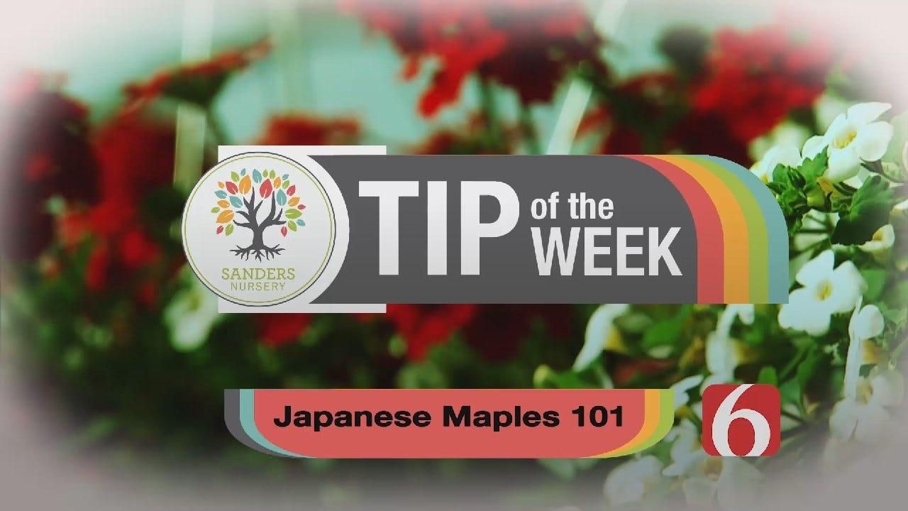 Tip of the Week 11