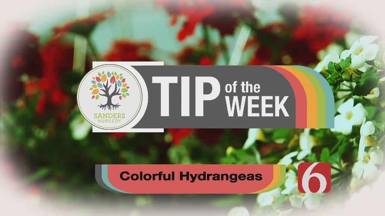 Tip of the Week 10