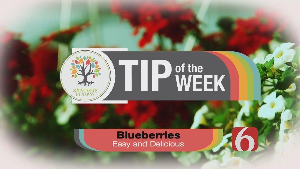 Tip of the Week 9