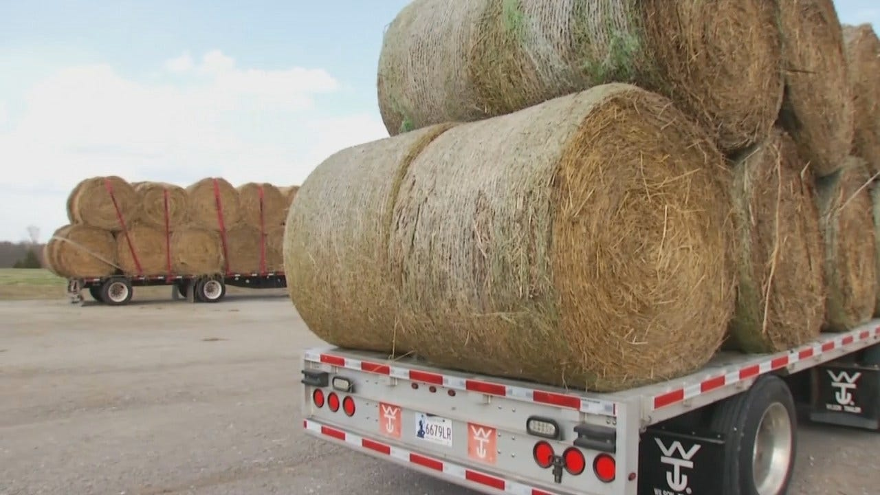 Green Country Ranchers Collecting What They Can For Wildfire Victims