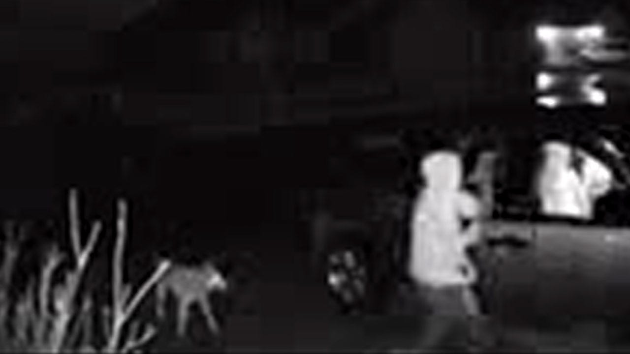 WATCH NOW: Man Breaks Into Truck In Oologah