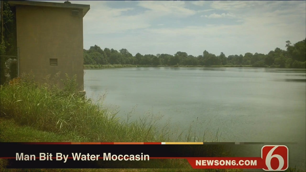 Melissa Hawkes: Man Bit By Water Moccasin On Collinsville City Lake